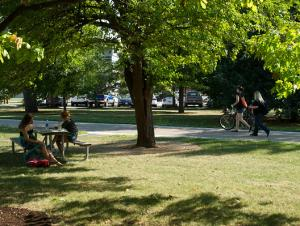 Students sitting at a picnic table on the lawn under a tree